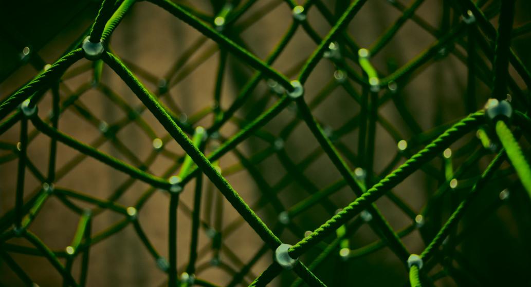 Digitalen Ökosystemen gehört die Zukunft